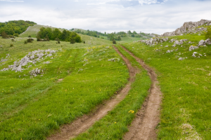 Stuck in a rut? How to get back on track